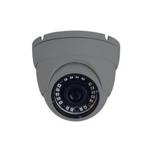 2 MP Eyeball met vaste 2,8 mm-lens grijs Echte WDR met IR 30 m-bereik Garantie 5 jaar